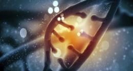 Medicamentos para enfermedades genéticas